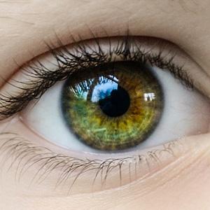300_coaching oczy są zwierciadłem duszy